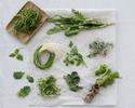 The Taste - Spring Namul