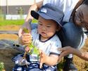 Bコース: 収穫体験で有機野菜を楽しむ!シンプルコース(3時間制)