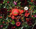ストロベリースイーツブッフェ「Grove of berry」(二部 15:30~18:00)