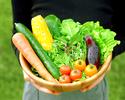 【オプション】有機野菜の収穫体験