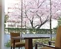 【桜が見える席確約】乾杯ロゼスパークリング付!春を楽しむ贅沢ディナー全6品