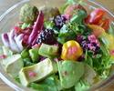 【TAKEOUT】ブッダボウル・サラダ+全粒粉のナン