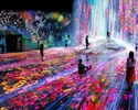 TeamLab Borderless + Seascape Lunch Course July 11 [Saturday, Sunday and public holidays]
