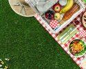 【1~4名】THE PARK ピクニックセット(3時間)