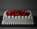 bouquet de fraises XLサイズ