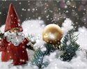 クリスマスコース B