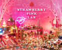 Strawberry Dessert Buffet ~Pink Lab~