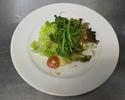 【テイクアウト】20品目の新鮮野菜サラダ ハーフサイズ