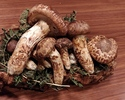 地野菜と旬の食材で季節を愉しむコース